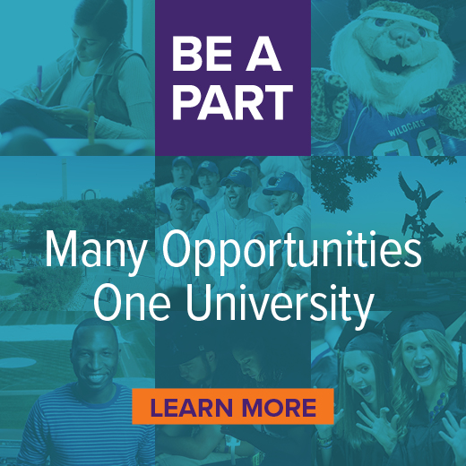 Many Opportunities, One University