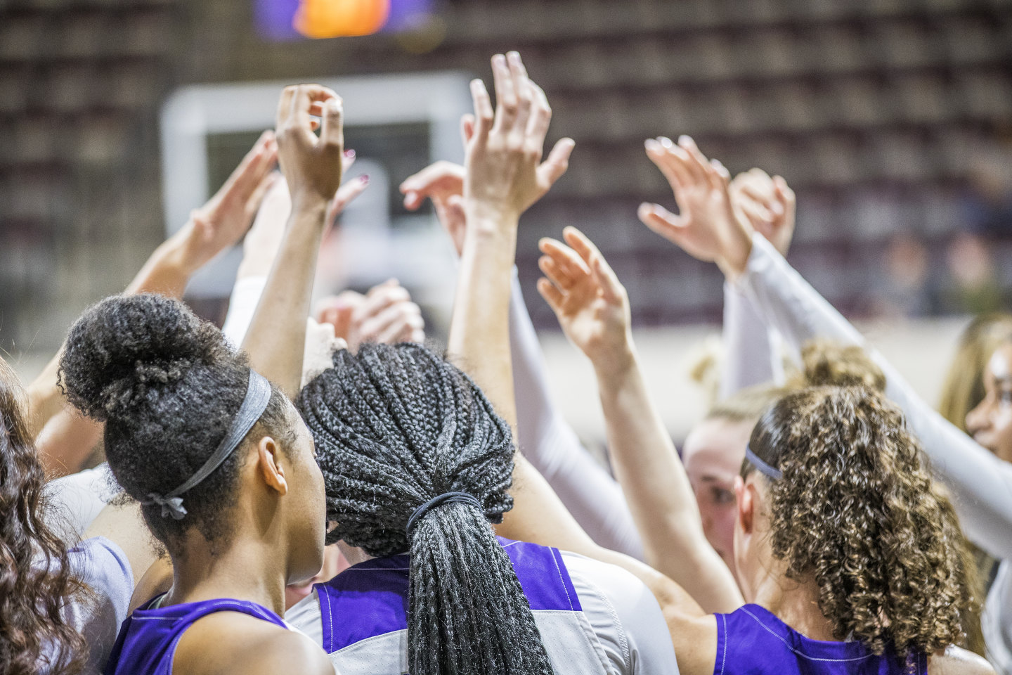 The Wildcats showed great team chemistry and grit in rallying to the Southland Conference Tournament title and their first-ever bid to March Madness.