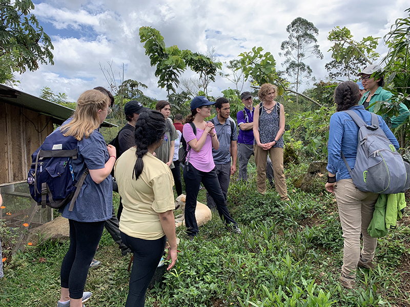 Students taking the social enterprise consulting course in Costa Rica learn about a butterfly farm. The course will be taught again during Spring Break 2020.
